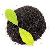 Plant Source Soil Conditioner Granular Agriculture Organic Manure